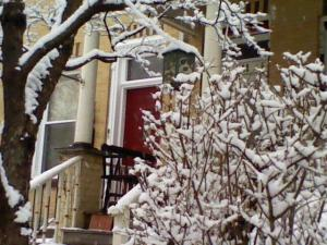 Our front door is obscured by the snow-covered forsythia, but the neighbor's red door makes a nice contrast with all the white.